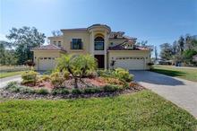 130 W Chapman Rd, Lutz, FL, 33548 - MLS T2864021